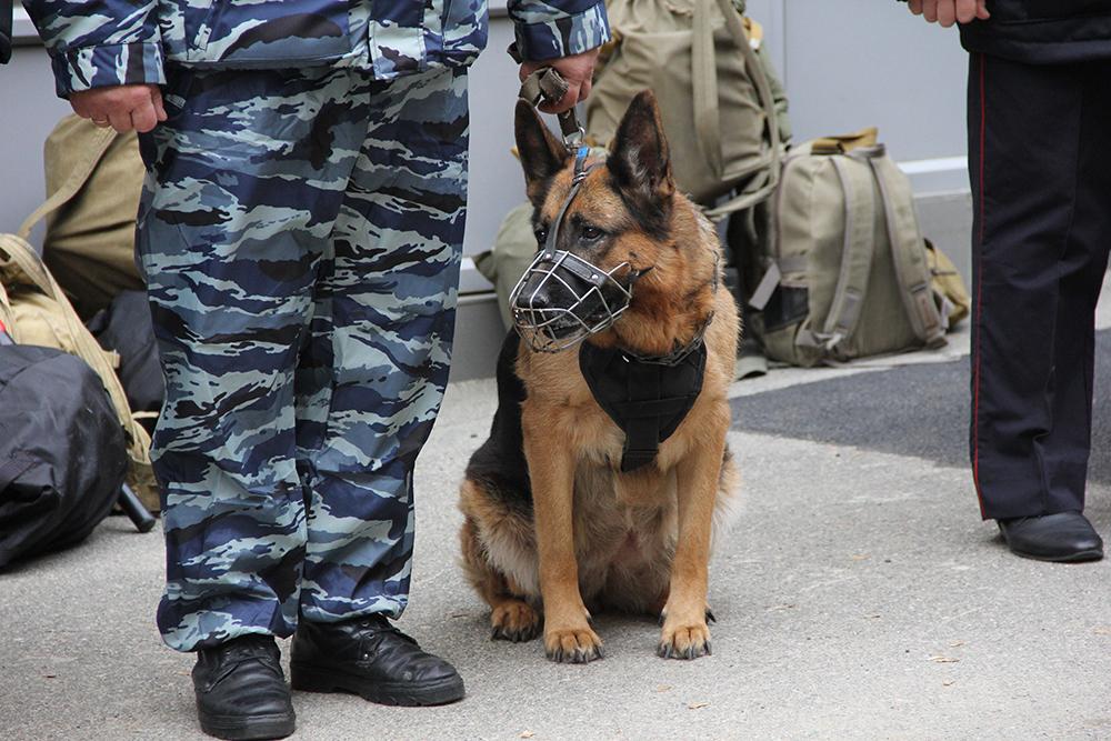 Оперативным штабом  в Ставропольском крае проведено плановое антитеррористическое командно-штабное учение «Невинномысск-Гроза-2018»